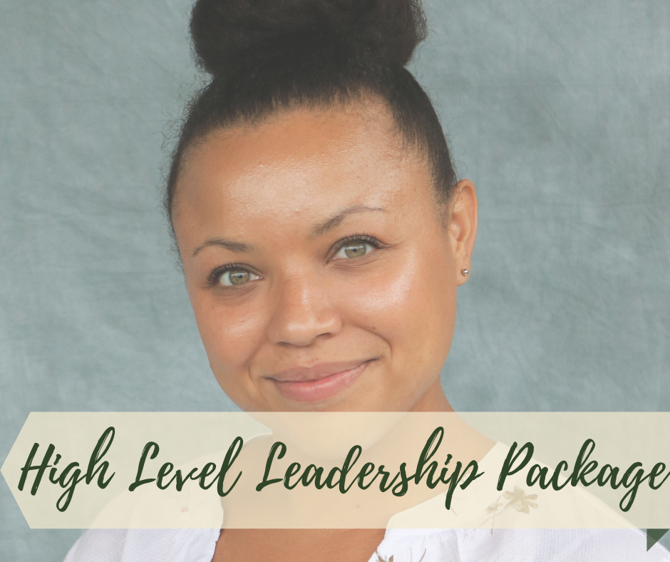 High Level Leadership Coaching Package